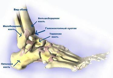 Искусственный сустав кисть сустав указательного пальца работа на компьютере